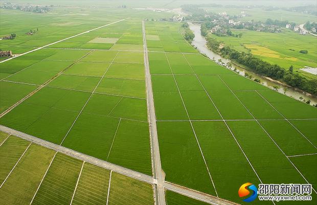 武冈云山高标准农田建设项目区(资料图)