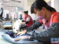 广西北流:齐心协力助脱贫