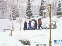 塔什干降雪
