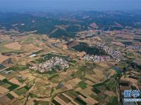 广西鹿寨:田园冬景