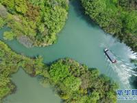 西溪濕地:春光旖旎又花朝