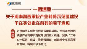 一圖速覽丨關于湘南湘西承接產業轉移示范區建設干在實處走在前列的若干意見