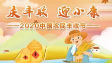 2020中国农民丰收节
