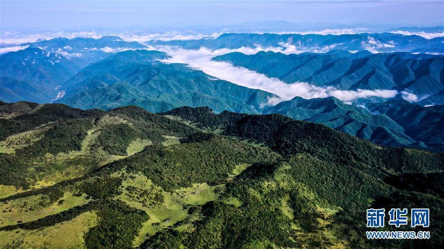 云起峰巒間 紫柏山如畫