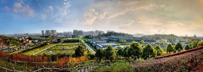 湘窖生态文化酿酒城春暖花开景美如画