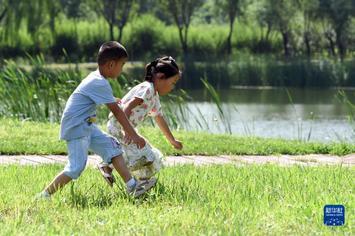 """石家(jia)莊︰采煤塌陷區(qu)""""變身""""綠色公園"""
