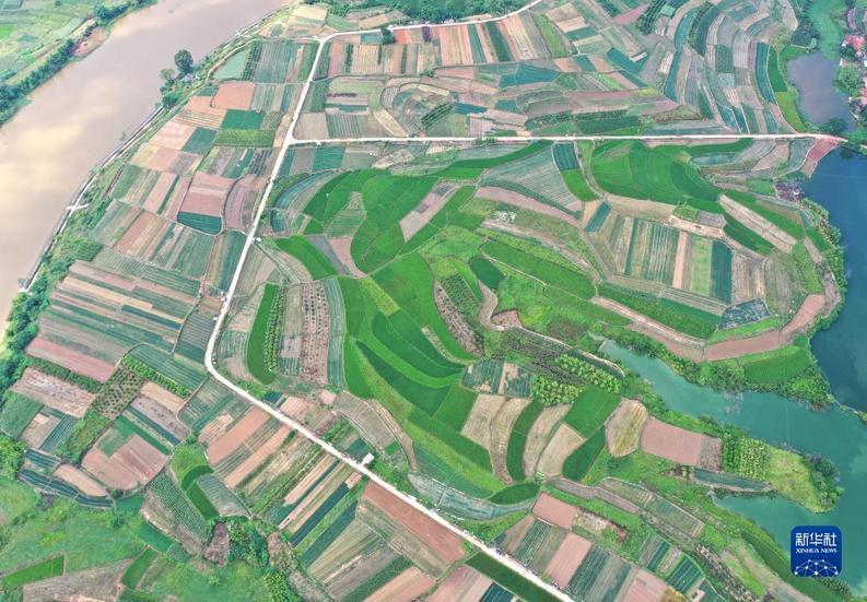 广西南宁:田园风光美