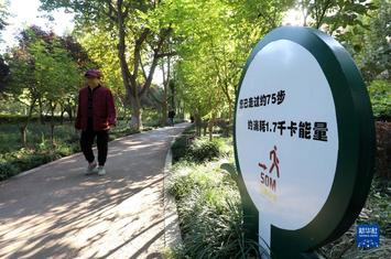 """河北石家莊(zhuang)︰""""街(jie)旁游園""""靚市容惠民生"""